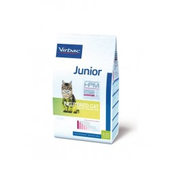 Junior Neutered